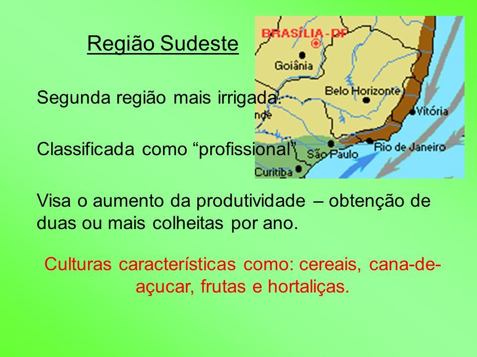 Região Sudeste Segunda região mais irrigada.