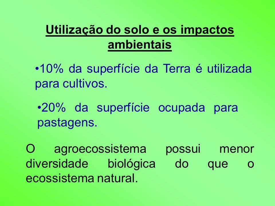 Utilização do solo e os impactos ambientais