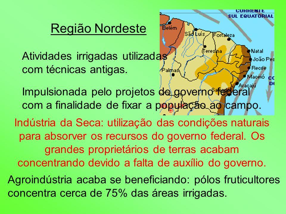 Região Nordeste Atividades irrigadas utilizadas com técnicas antigas.