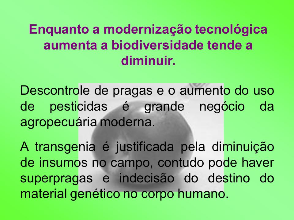 Enquanto a modernização tecnológica aumenta a biodiversidade tende a diminuir.