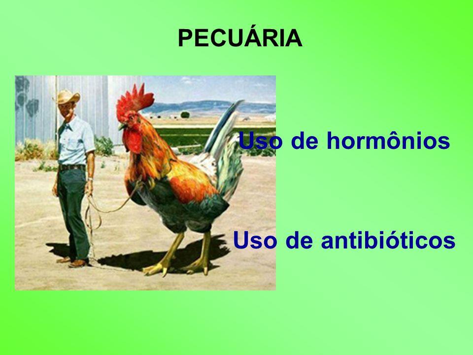 PECUÁRIA Uso de hormônios Uso de antibióticos