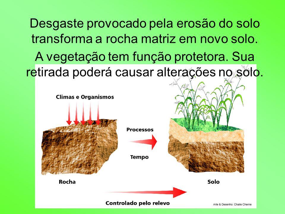 Desgaste provocado pela erosão do solo transforma a rocha matriz em novo solo.