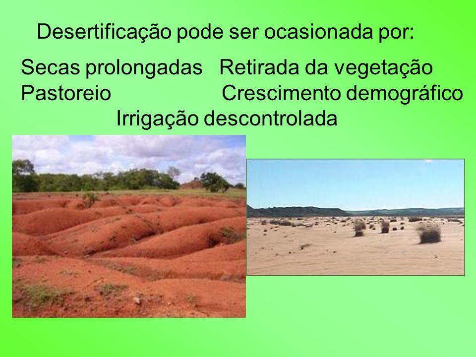 Desertificação pode ser ocasionada por: