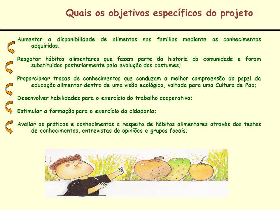Quais os objetivos específicos do projeto