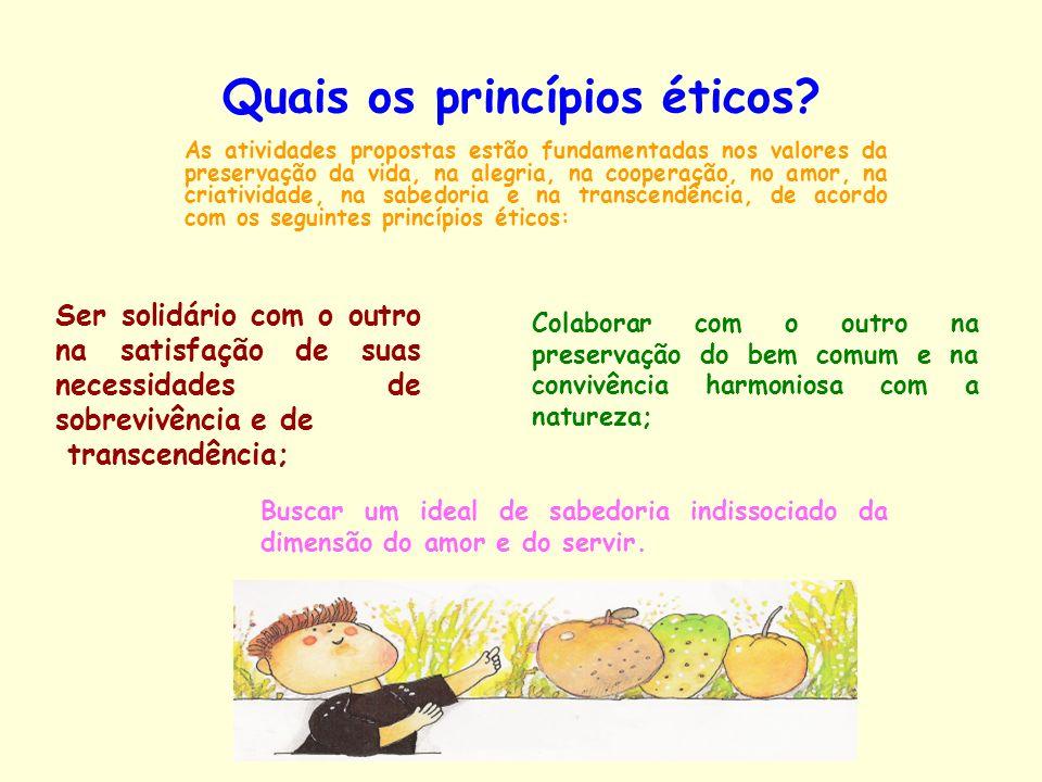 Quais os princípios éticos