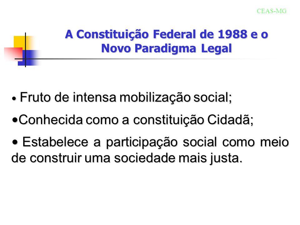 A Constituição Federal de 1988 e o Novo Paradigma Legal