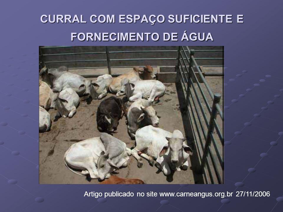 CURRAL COM ESPAÇO SUFICIENTE E FORNECIMENTO DE ÁGUA