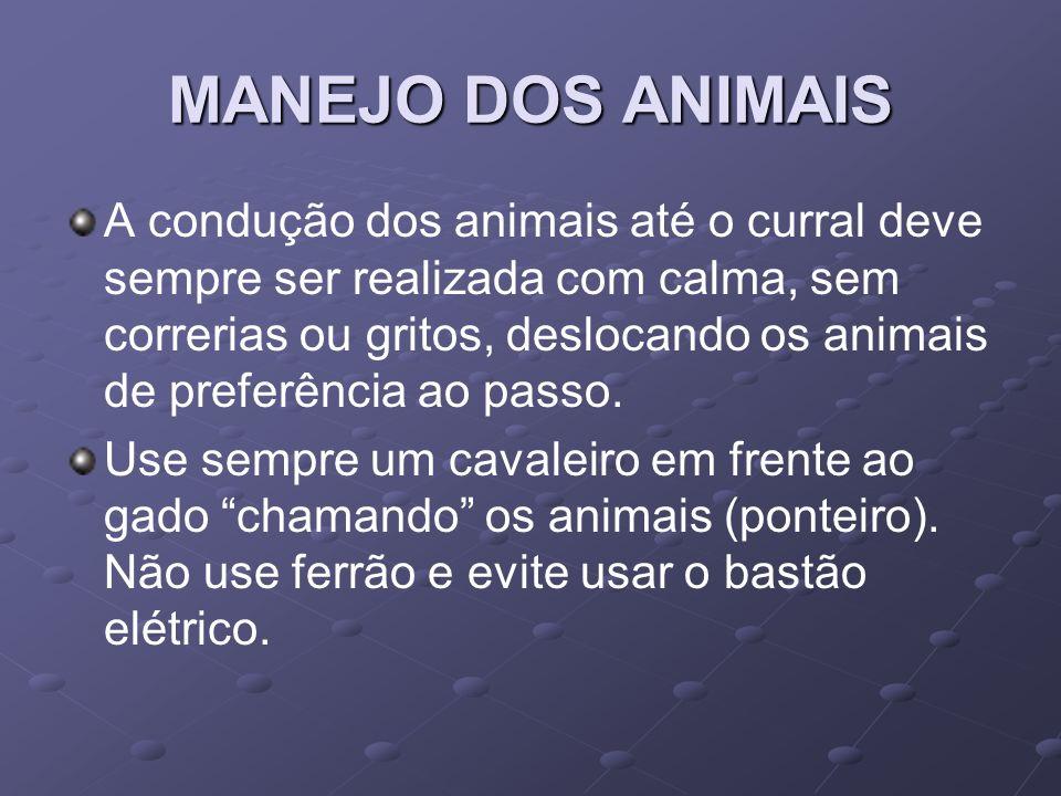 MANEJO DOS ANIMAIS