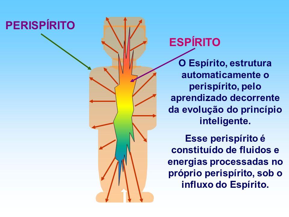 PERISPÍRITO ESPÍRITO. O Espírito, estrutura automaticamente o perispírito, pelo aprendizado decorrente da evolução do princípio inteligente.