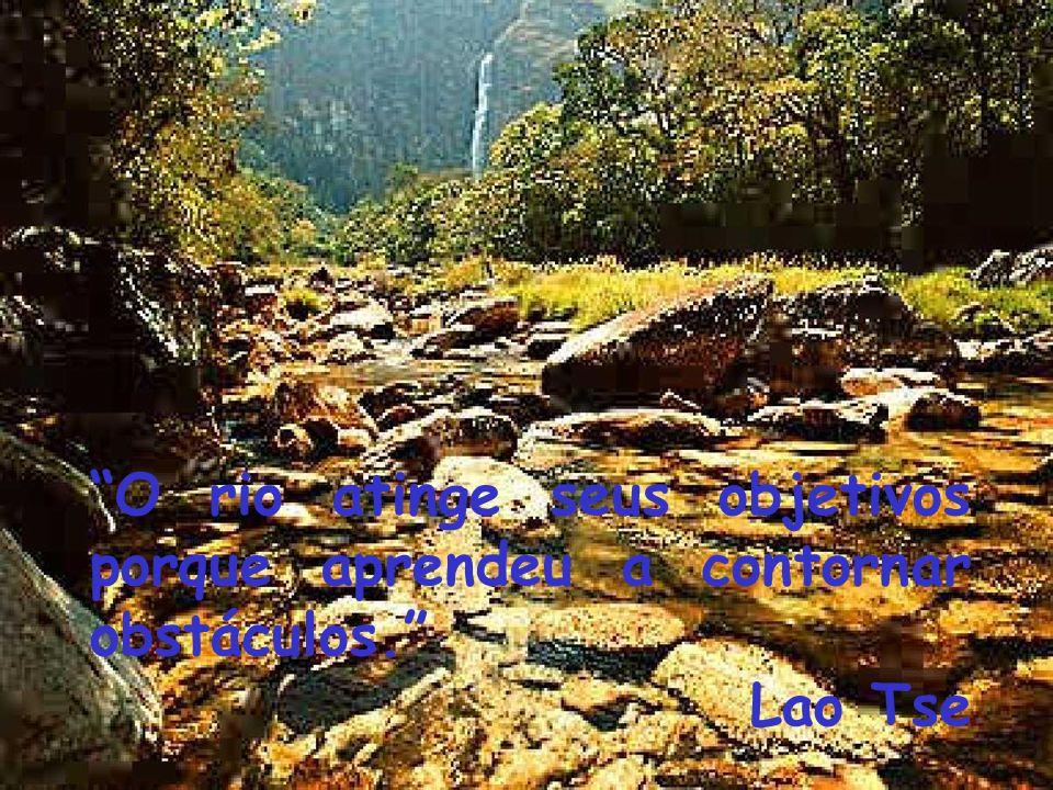 O rio atinge seus objetivos porque aprendeu a contornar obstáculos.