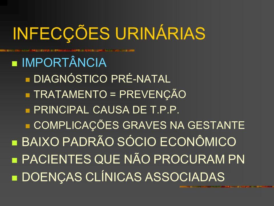 INFECÇÕES URINÁRIAS IMPORTÂNCIA BAIXO PADRÃO SÓCIO ECONÔMICO