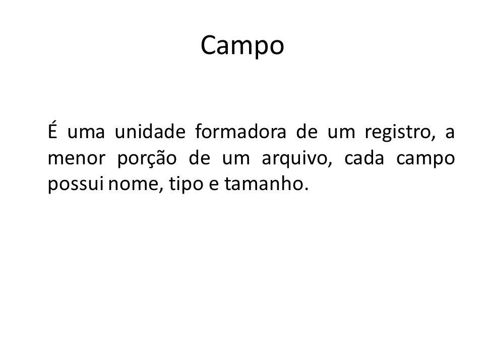 Campo É uma unidade formadora de um registro, a menor porção de um arquivo, cada campo possui nome, tipo e tamanho.