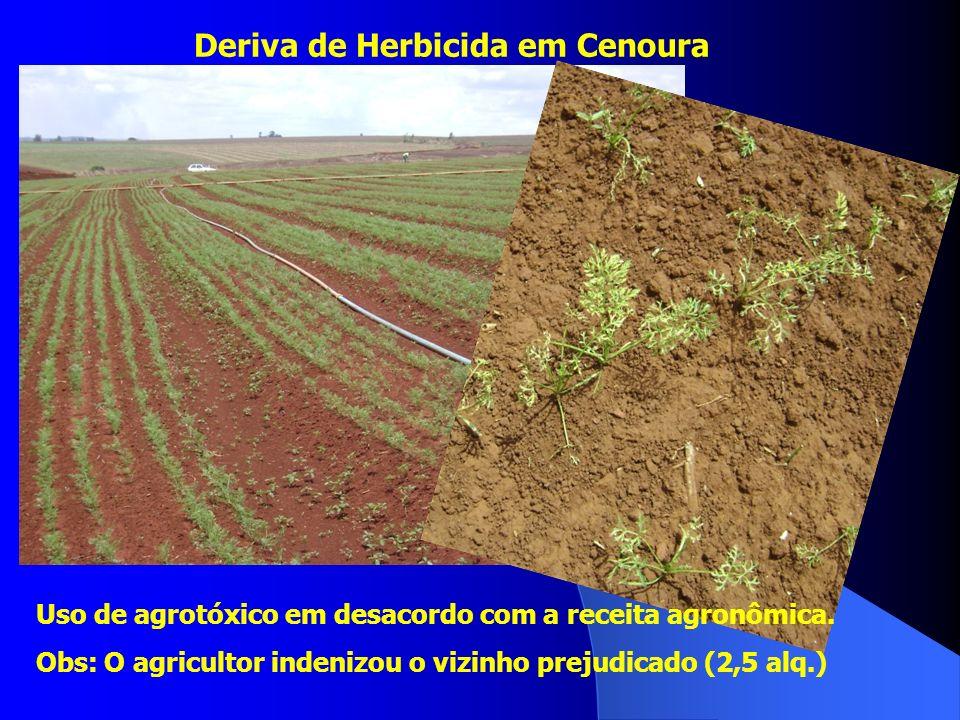 Deriva de Herbicida em Cenoura