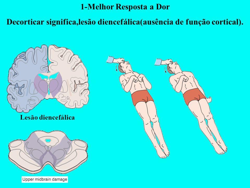 Decorticar significa,lesão diencefálica(ausência de função cortical).