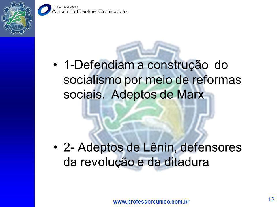 2- Adeptos de Lênin, defensores da revolução e da ditadura