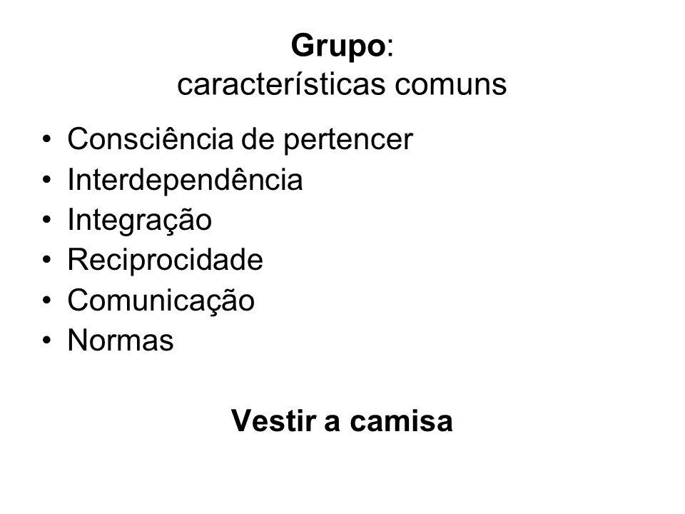 Grupo: características comuns