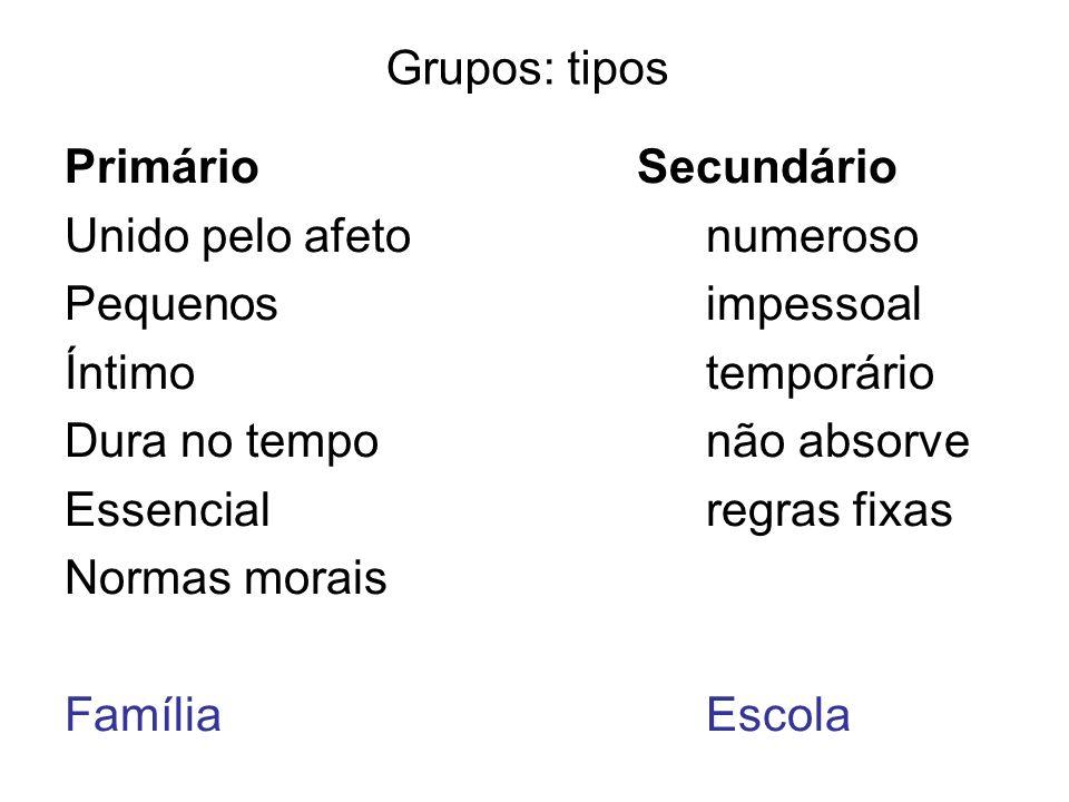 Grupos: tipos Primário Secundário. Unido pelo afeto numeroso. Pequenos impessoal.