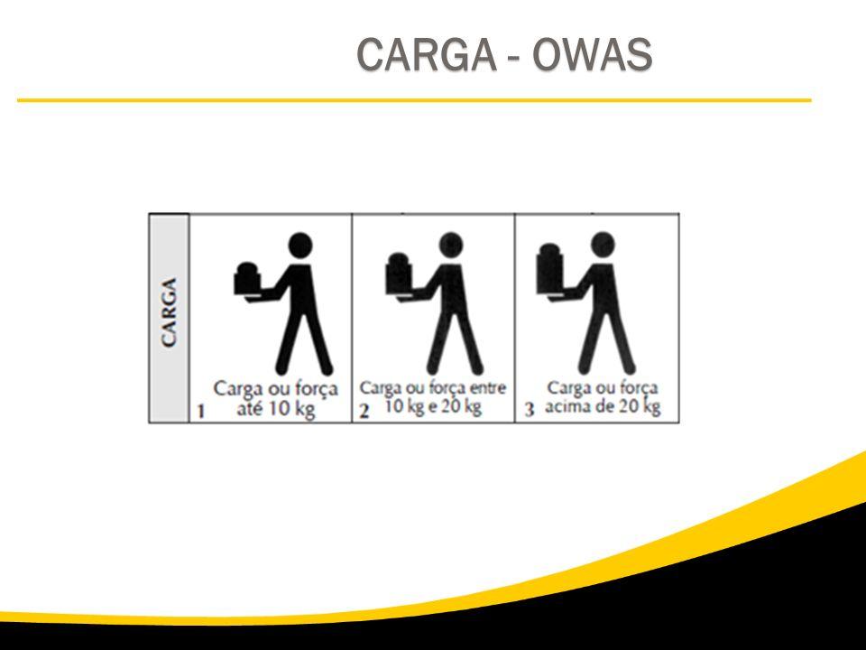 CARGA - OWAS