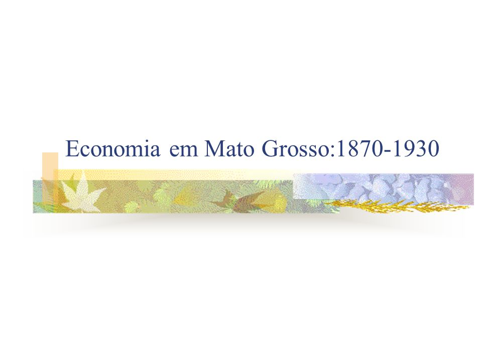 Economia em Mato Grosso:1870-1930