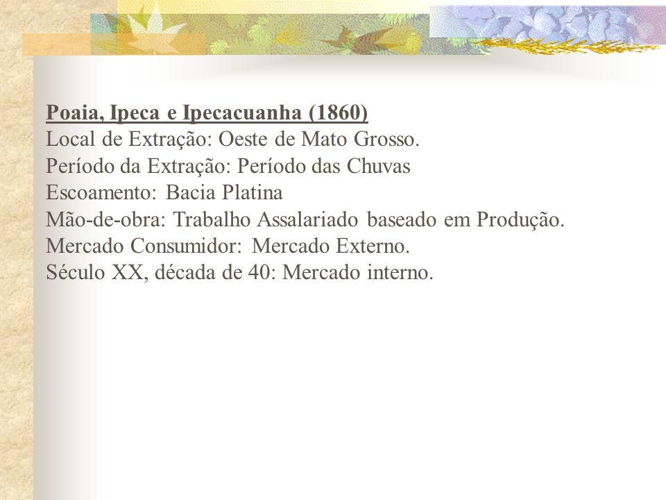 Poaia, Ipeca e Ipecacuanha (1860)