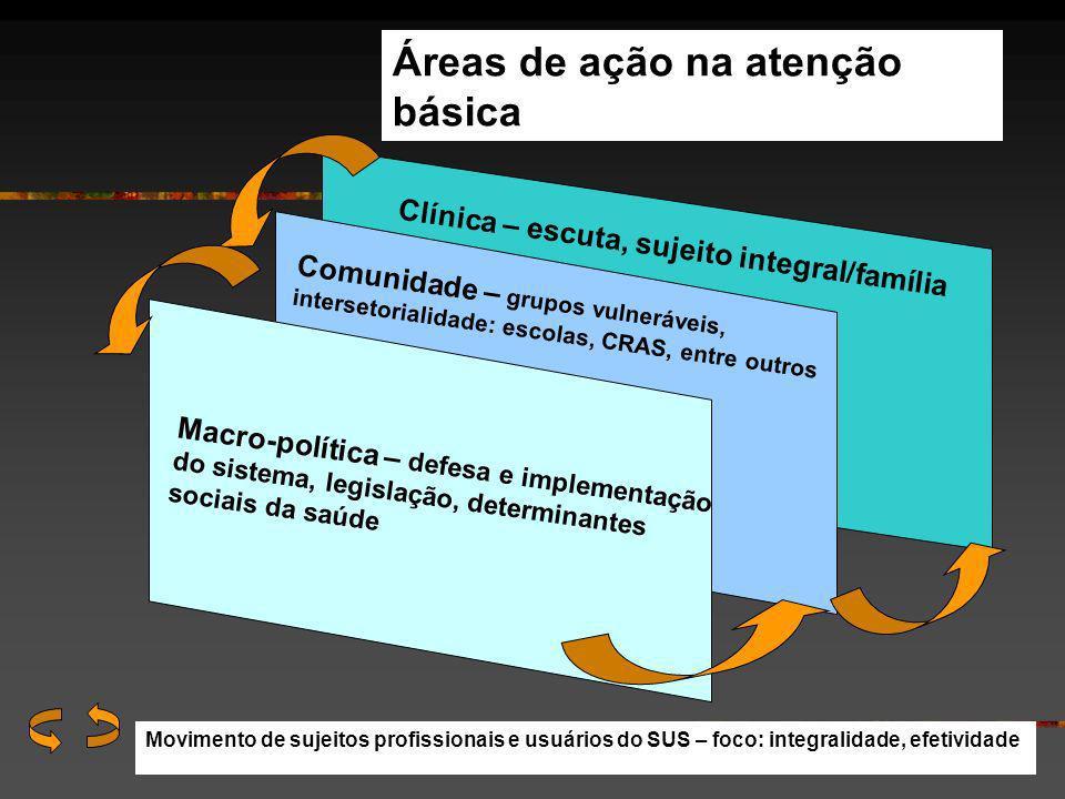 Áreas de ação na atenção básica