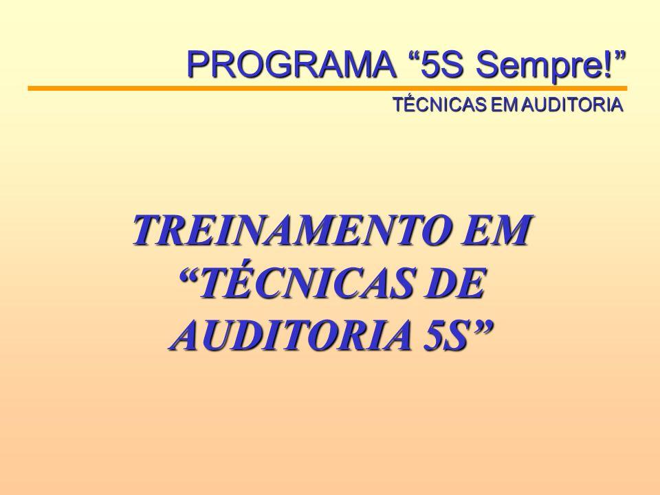 TREINAMENTO EM TÉCNICAS DE AUDITORIA 5S