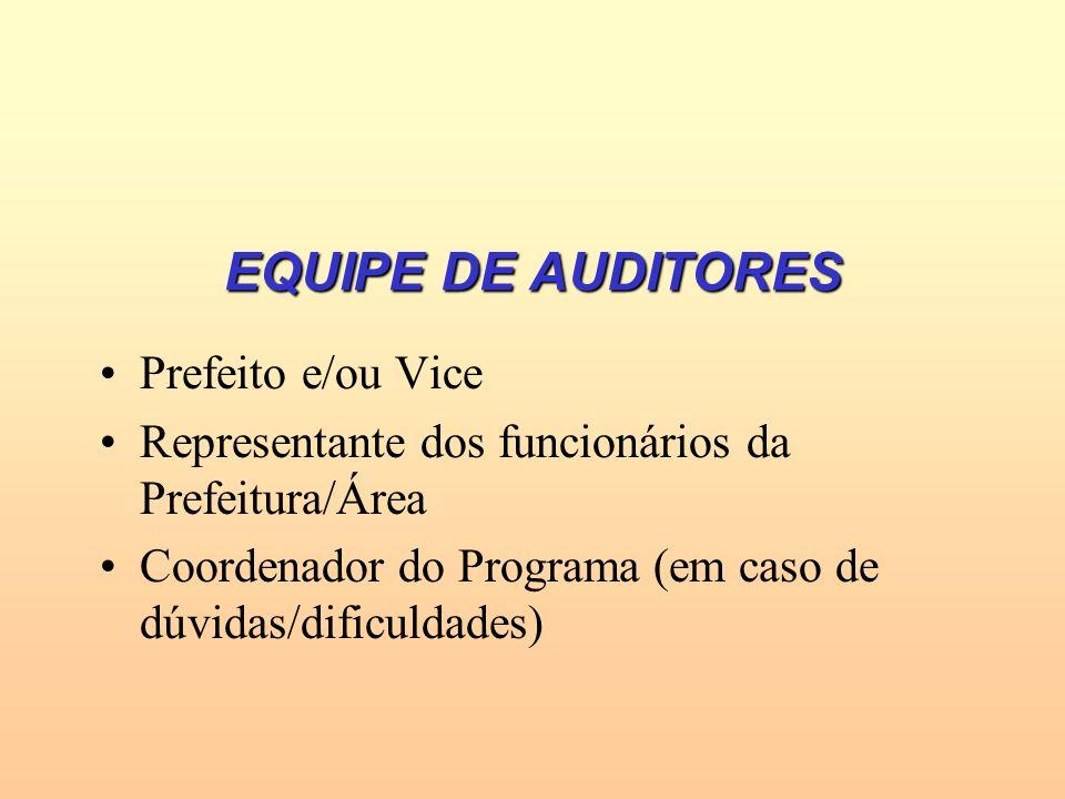 EQUIPE DE AUDITORES Prefeito e/ou Vice