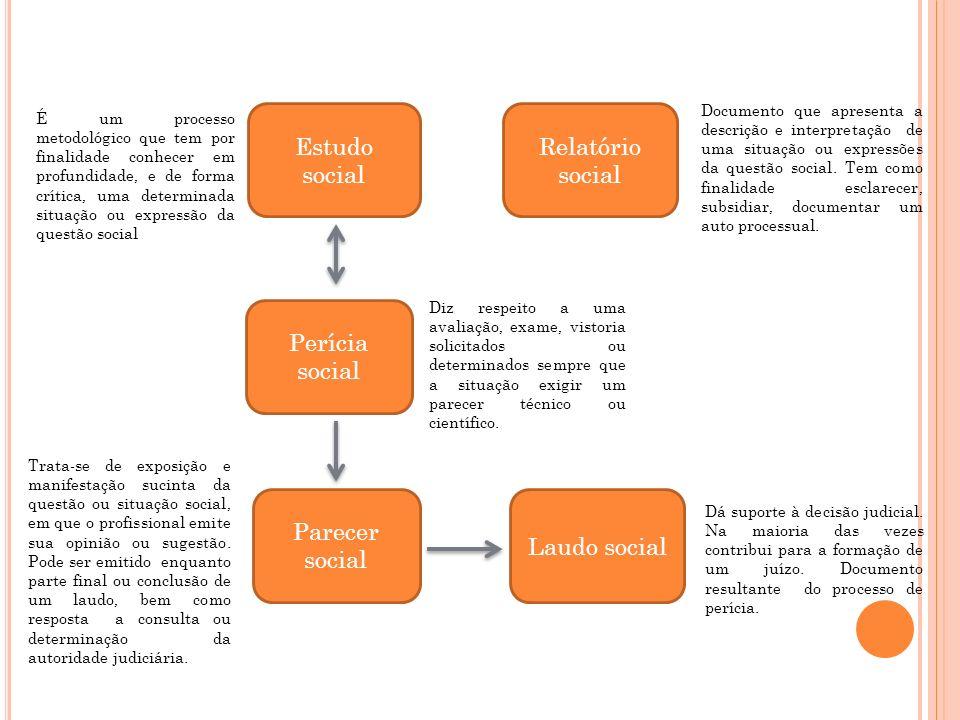Estudo social Relatório social Perícia social Parecer social