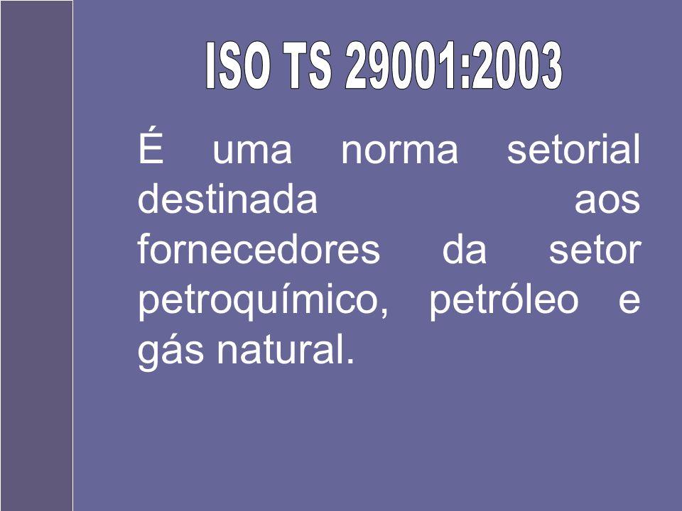 ISO TS 29001:2003 É uma norma setorial destinada aos fornecedores da setor petroquímico, petróleo e gás natural.