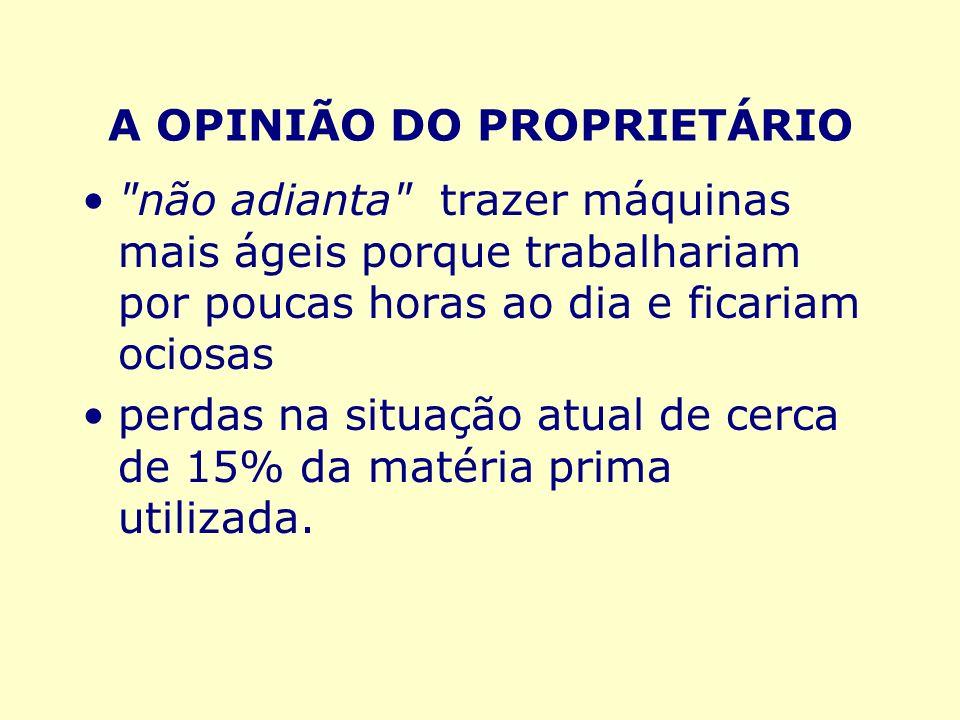 A OPINIÃO DO PROPRIETÁRIO