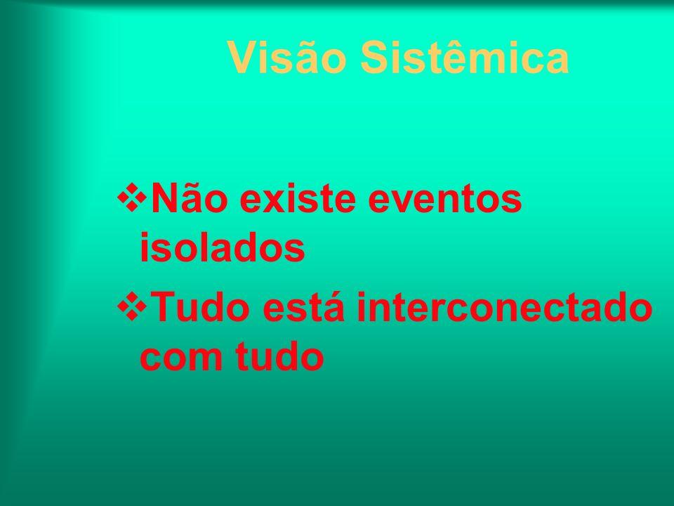 Visão Sistêmica Não existe eventos isolados