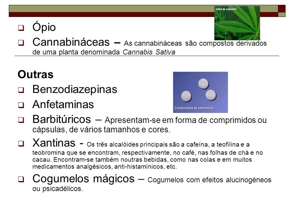 ÓpioCannabináceas – As cannabináceas são compostos derivados de uma planta denominada Cannabis Sativa.