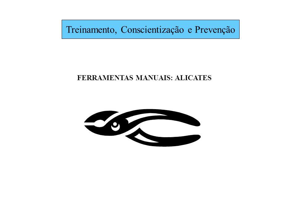 Treinamento, Conscientização e Prevenção
