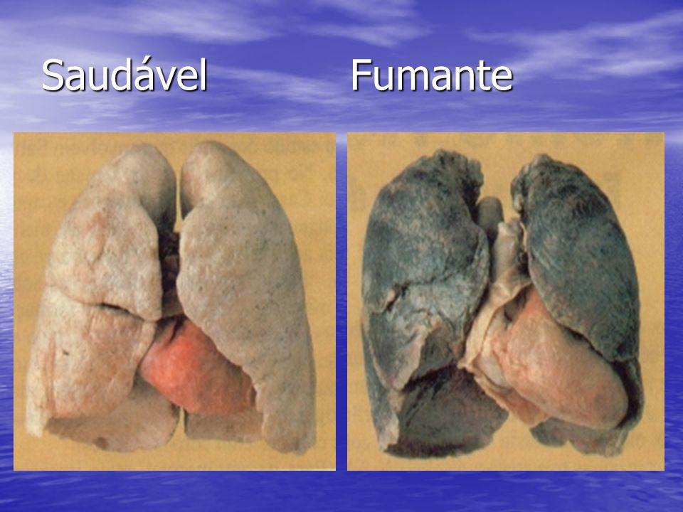 Saudável Fumante