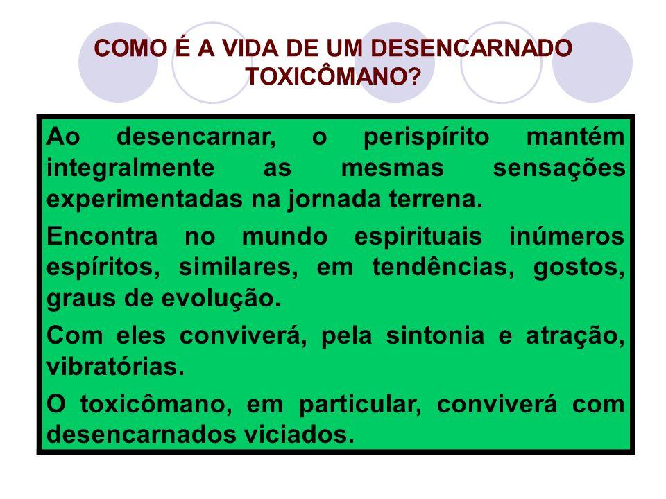 COMO É A VIDA DE UM DESENCARNADO TOXICÔMANO