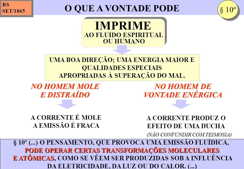 IMPRIME O QUE A VONTADE PODE § 10º NO HOMEM MOLE E DISTRAÍDO