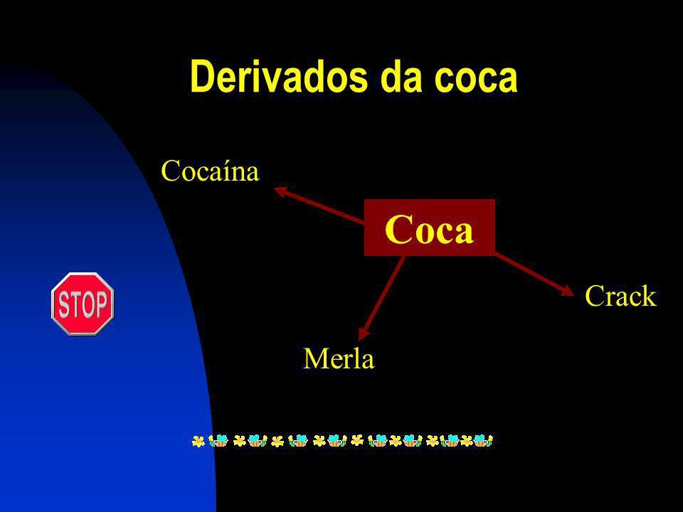 Derivados da coca Cocaína Coca Crack Merla