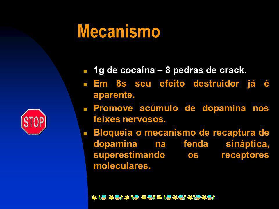 Mecanismo 1g de cocaína – 8 pedras de crack.