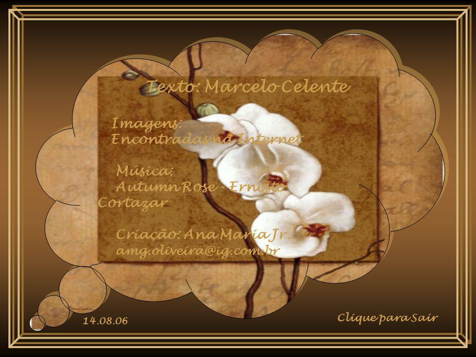 Texto: Marcelo Celente