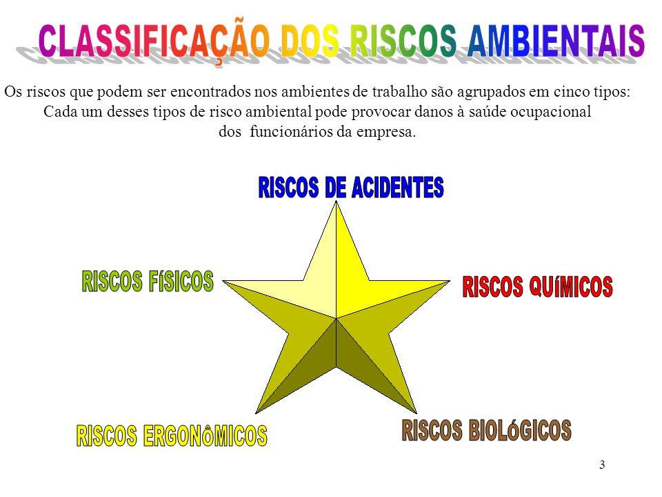 CLASSIFICAÇÃO DOS RISCOS AMBIENTAIS