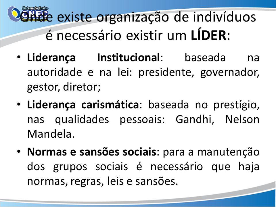 Onde existe organização de indivíduos é necessário existir um LÍDER: