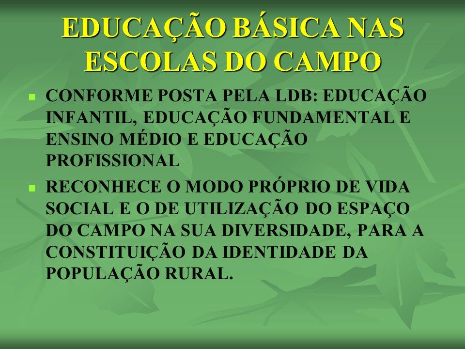 EDUCAÇÃO BÁSICA NAS ESCOLAS DO CAMPO