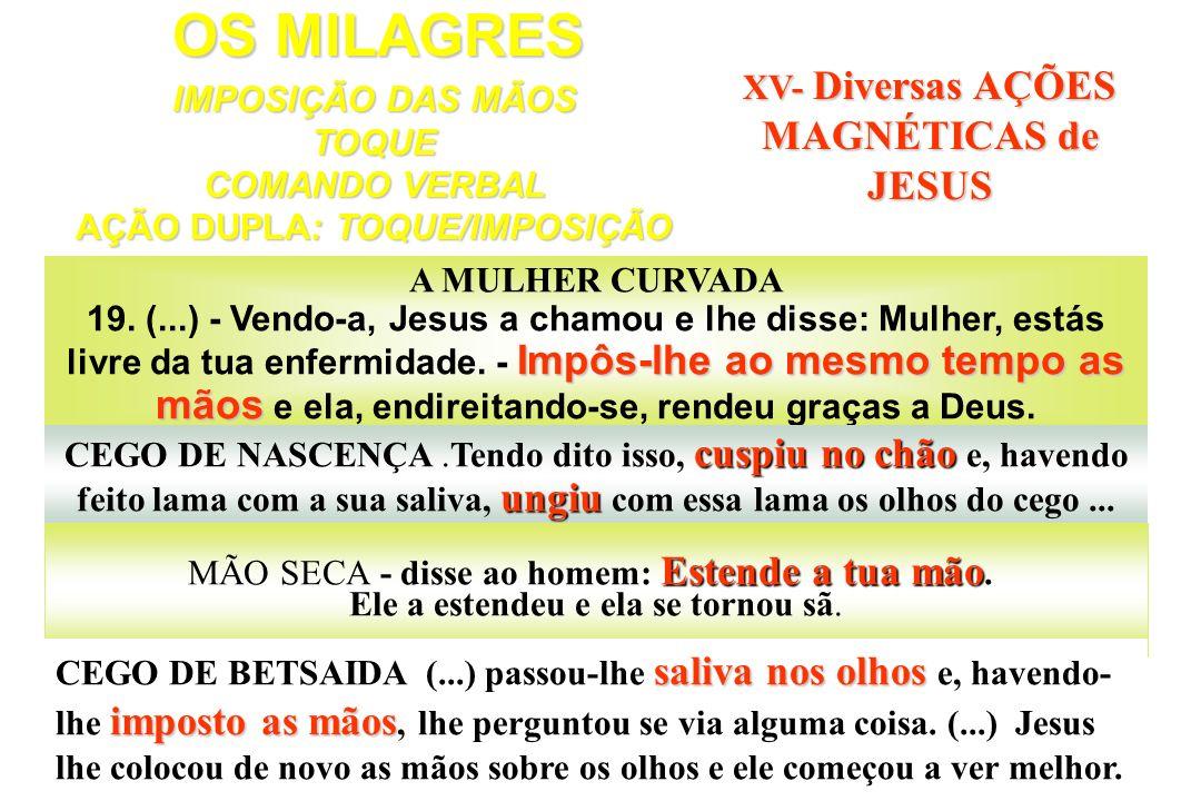 OS MILAGRES XV- Diversas AÇÕES MAGNÉTICAS de JESUS