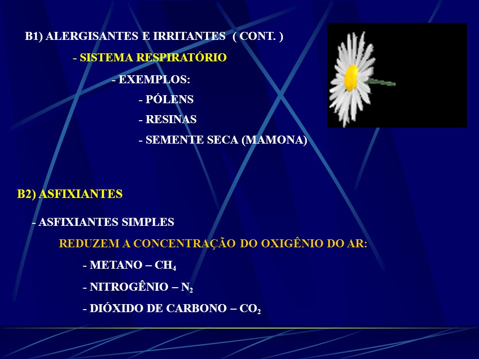 B2) ASFIXIANTES B1) ALERGISANTES E IRRITANTES ( CONT. )