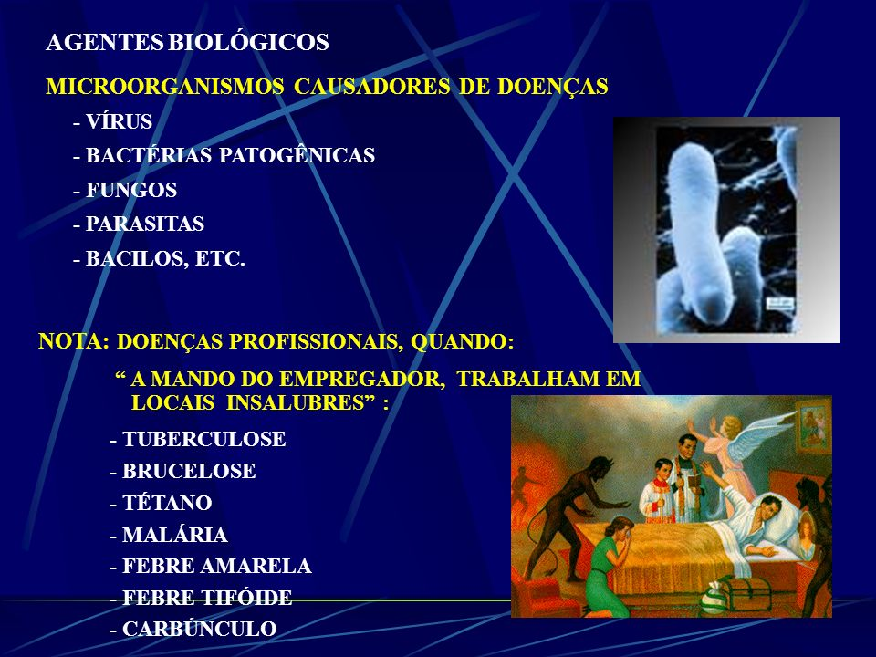 AGENTES BIOLÓGICOS MICROORGANISMOS CAUSADORES DE DOENÇAS