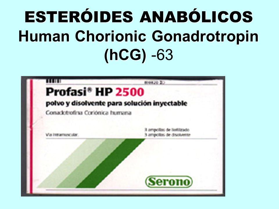 ESTERÓIDES ANABÓLICOS Human Chorionic Gonadrotropin (hCG) -63