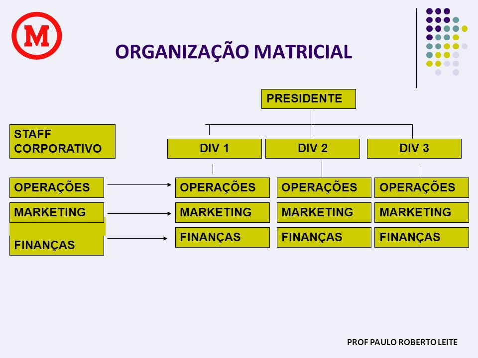 ORGANIZAÇÃO MATRICIAL