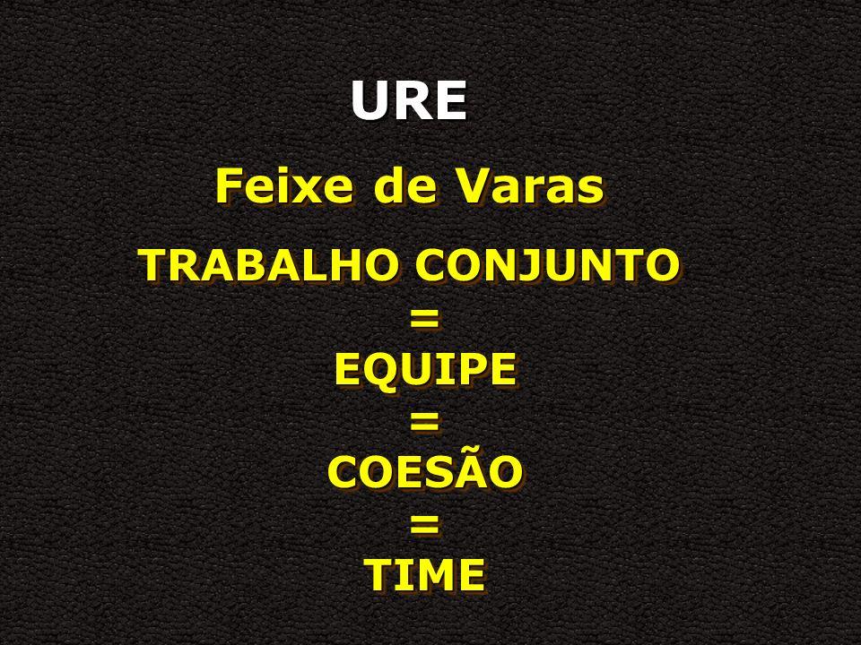 TRABALHO CONJUNTO = EQUIPE = COESÃO = TIME
