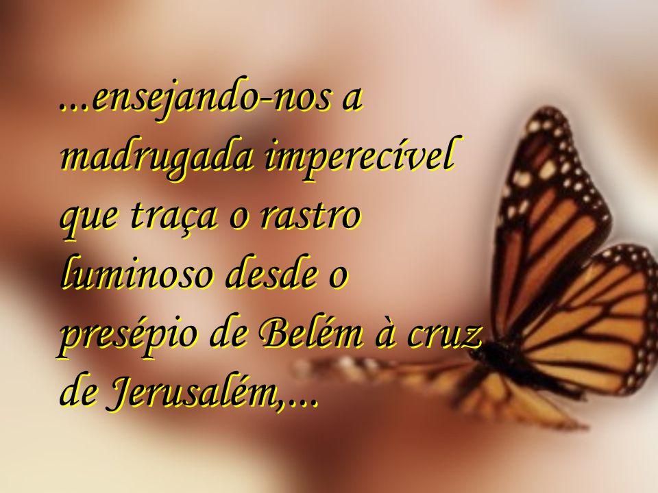 ...ensejando-nos a madrugada imperecível que traça o rastro luminoso desde o presépio de Belém à cruz de Jerusalém,...
