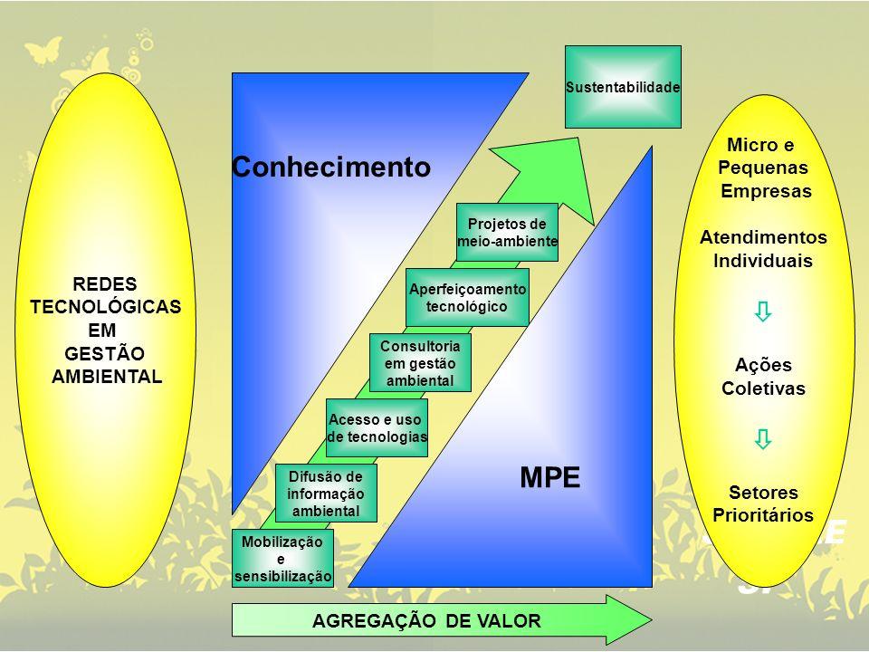 Conhecimento  MPE Micro e Pequenas Empresas Atendimentos REDES